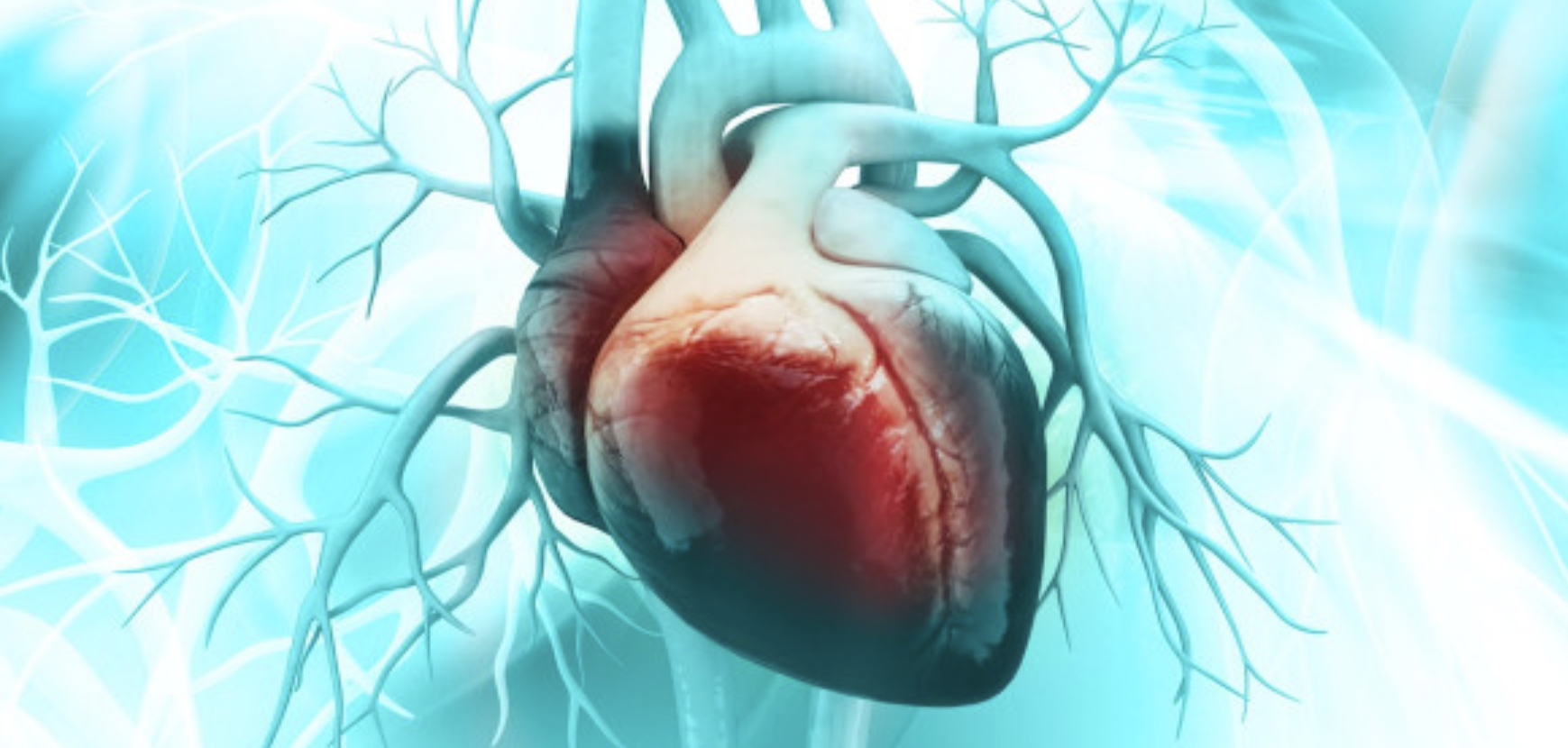 A Genetic Test Could Someday Predict Your Heart Attack Risk (Discover, 2020)